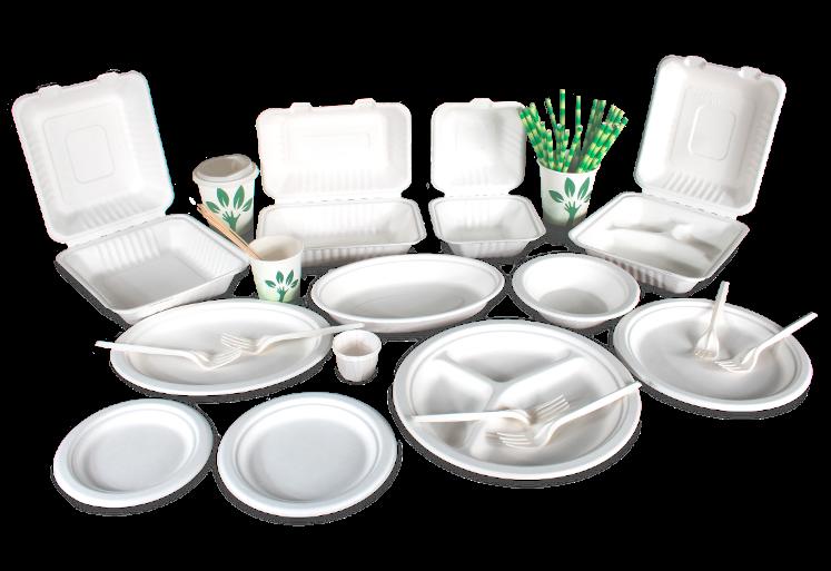 Productos 100% Biodegradables De Bagazos De Caña Y Fécula De Maíz